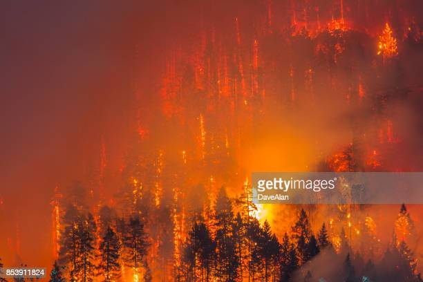 columbia river gorge fire - forest fire stock pictures, royalty-free photos & images