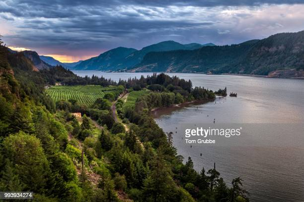columbia river view ii - columbia river gorge stock pictures, royalty-free photos & images