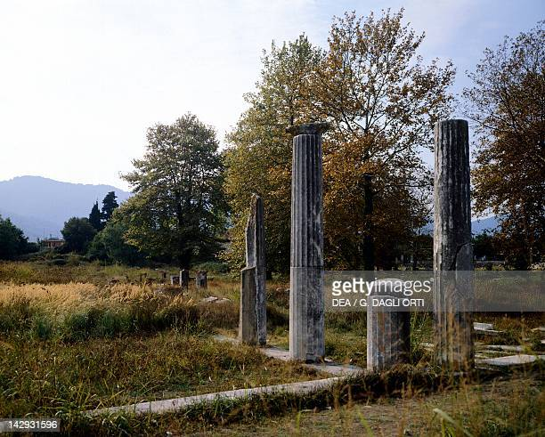 Columns in the Agora of Thassos Greece Greek civilization 4th Century BC