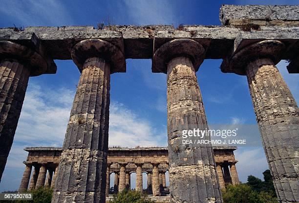 Columns of the Temple of Hera or Basilica of Paestum 6th century BC Temple of Neptune in the background Paestum archaeological site Capaccio Campania...
