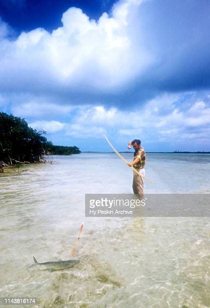 Colyn Rees strikes with his bow and arrow while bone fishing on April 7, 1956 in the Bahamas.