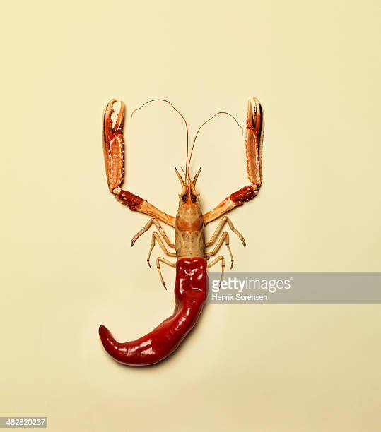 Combination of a bell pepper and a langoustine