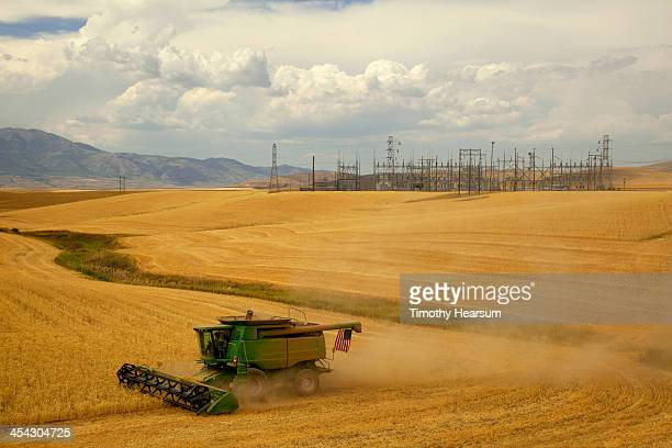 combine cutting wheat with power station beyond - timothy hearsum stock pictures, royalty-free photos & images