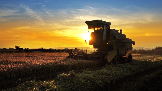 Combine, field and sunrise. Reach success in agribusiness 1023528536