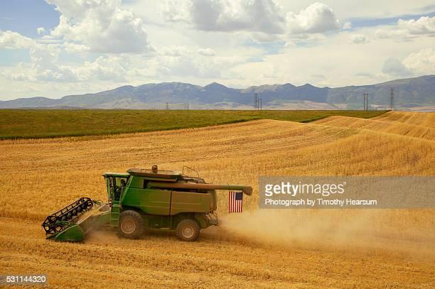combine flies an american flag as it cuts a rolling field of wheat - timothy hearsum stock-fotos und bilder