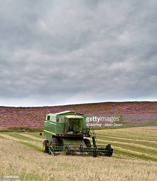 combine harvester at alum bay farm - s0ulsurfing stock pictures, royalty-free photos & images