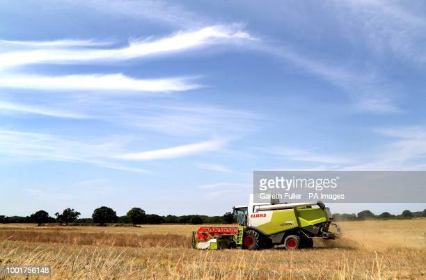 A combine harvester at work in a field near Ashford Kent as the warm weather continues