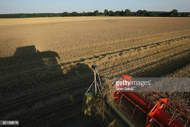 A combine harvester combine a field of wheat near Juehnsdorf on July 31 2008 near Berlin Germany Though world food prices are rising German farmers...