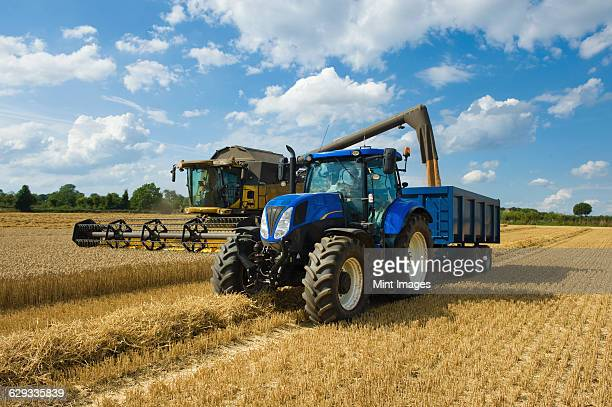 combine harvester delivering harvested grain onto a grain trailer on a farm. - tractor stock pictures, royalty-free photos & images