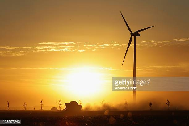 A combine harvester drives through a wheat field near a wind turbine at sunset on August 20 2010 in Roedgen near Bitterfeld Germany Germany is...