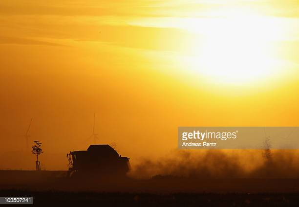 A combine harvester drives through a wheat field near wind turbines at sunset on August 20 2010 in Roedgen near Bitterfeld Germany Germany is...