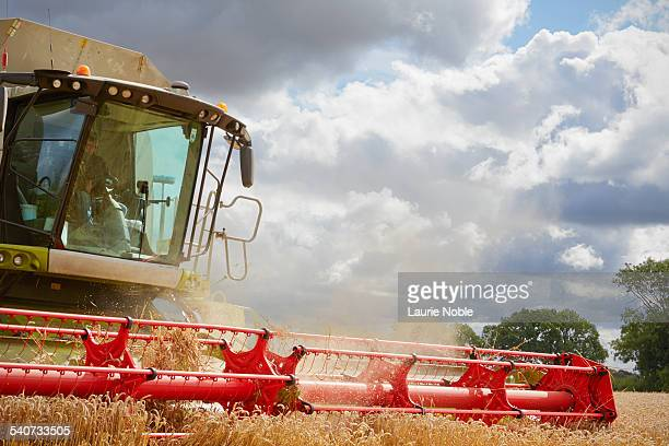 combine harvester harvesting - agricultural machinery stock pictures, royalty-free photos & images