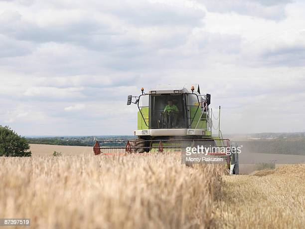 combine harvester in wheat field - combine harvester stock pictures, royalty-free photos & images