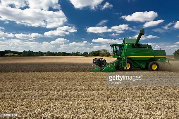 Combine harvester in wheat field.