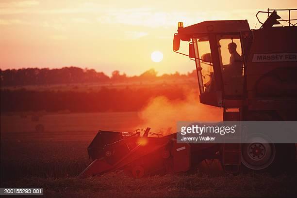 Combine harvester in wheat field, summer, sunset