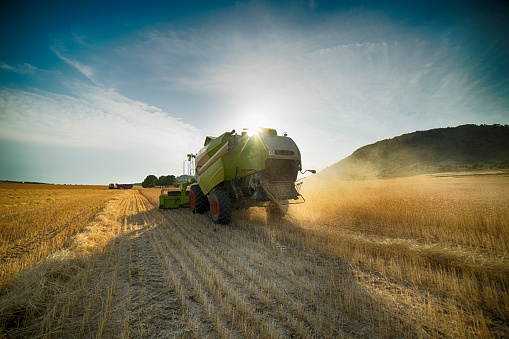 Combine harvester perspective from back view - gettyimageskorea