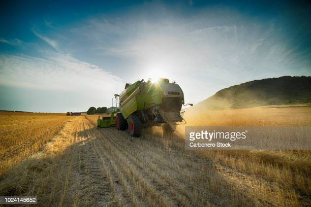 combine harvester perspective from back view - tractor stock pictures, royalty-free photos & images