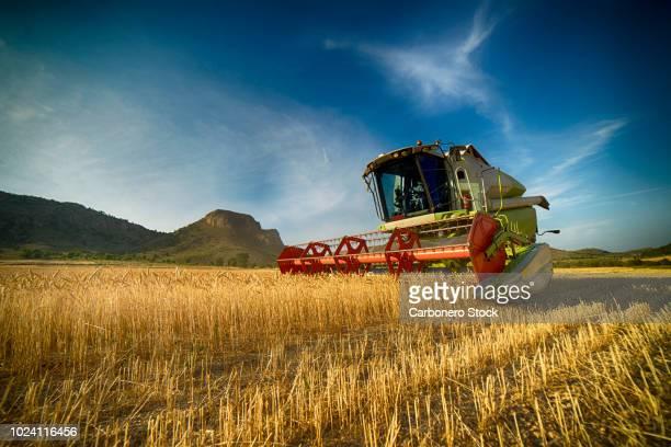 combine harvester perspective - murcia - fotografias e filmes do acervo