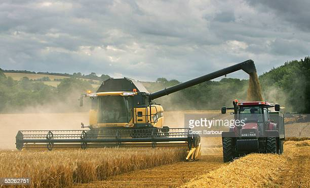 A combine harvester works its way through a field of barley in the chalk downlands July 19 2005 south of Salisbury England The future shape of...