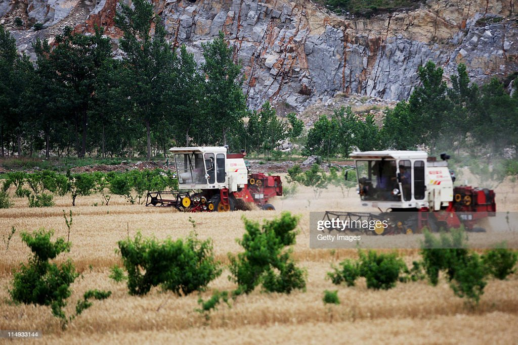 Combine harvesters are put to work in a field of wheat on May 29, 2011 in Huaibei, Anhui Province of China. Anhui province will put 125,000 combine harvesters into this wheat harvest season, and it's estimated that the work will be completed basically in 10 days.
