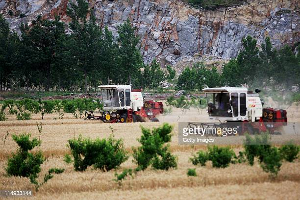 Combine harvesters are put to work in a field of wheat on May 29, 2011 in Huaibei, Anhui Province of China. Anhui province will put 125,000 combine...