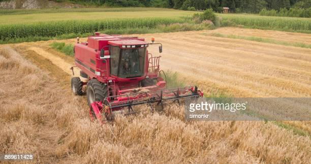 Maaidorsers rijp tarwe oogsten