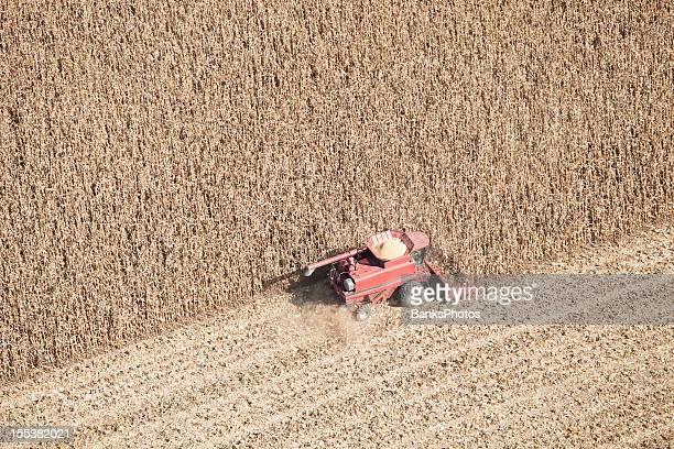 Combine Harvesting a Fall Corn Field