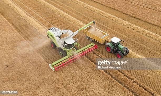 combine harvesting crop - farm stock pictures, royalty-free photos & images