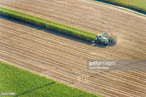 Combine harvesting