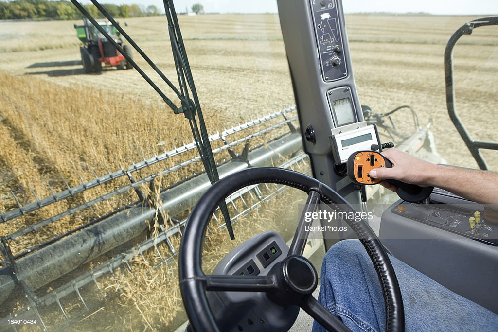 Combine Harvesting Soybeans from Operator's Cab : Stock Photo