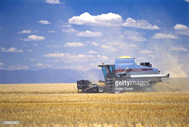 Combine harvesting wheat crop, Wee Waa area, NSW, Australia