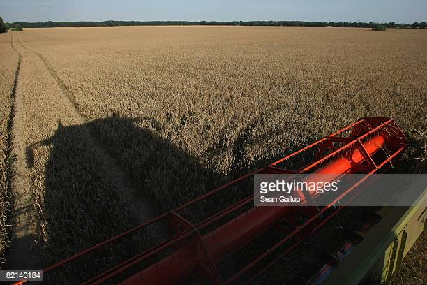 A combine harvests wheat at a field July 31 2008 near Juehnsdorf Germany Though world food prices are rising German farmers are reporting that the...
