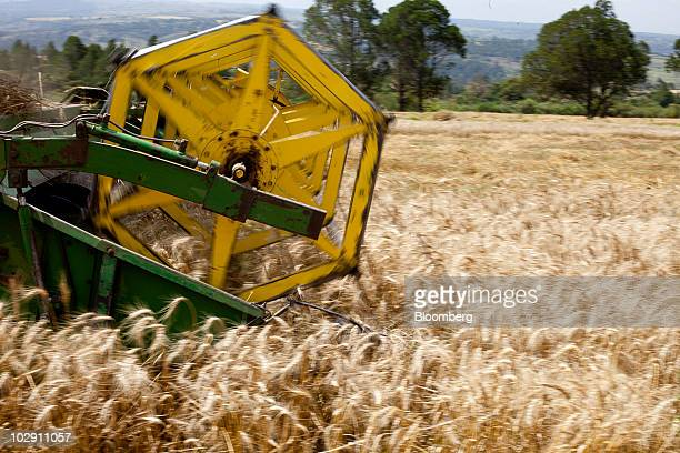 A combine harvests wheat in the Rift Valley near Narok Kenya on Friday July 9 2010 Three years of inadequate rainfall in Kenya triggered the...