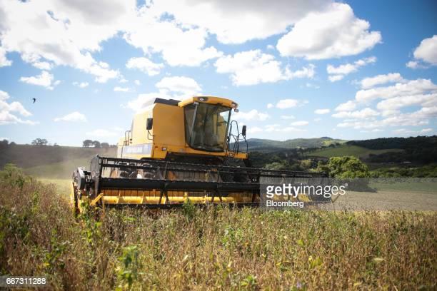 A combine machine harvests soybeans at the Santa Cruz farm near Atibaia Brazil on Wednesday March 29 2017 Brazil is world's biggest soybean exporter...