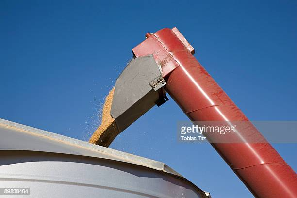 A combine pouring wheat into a container