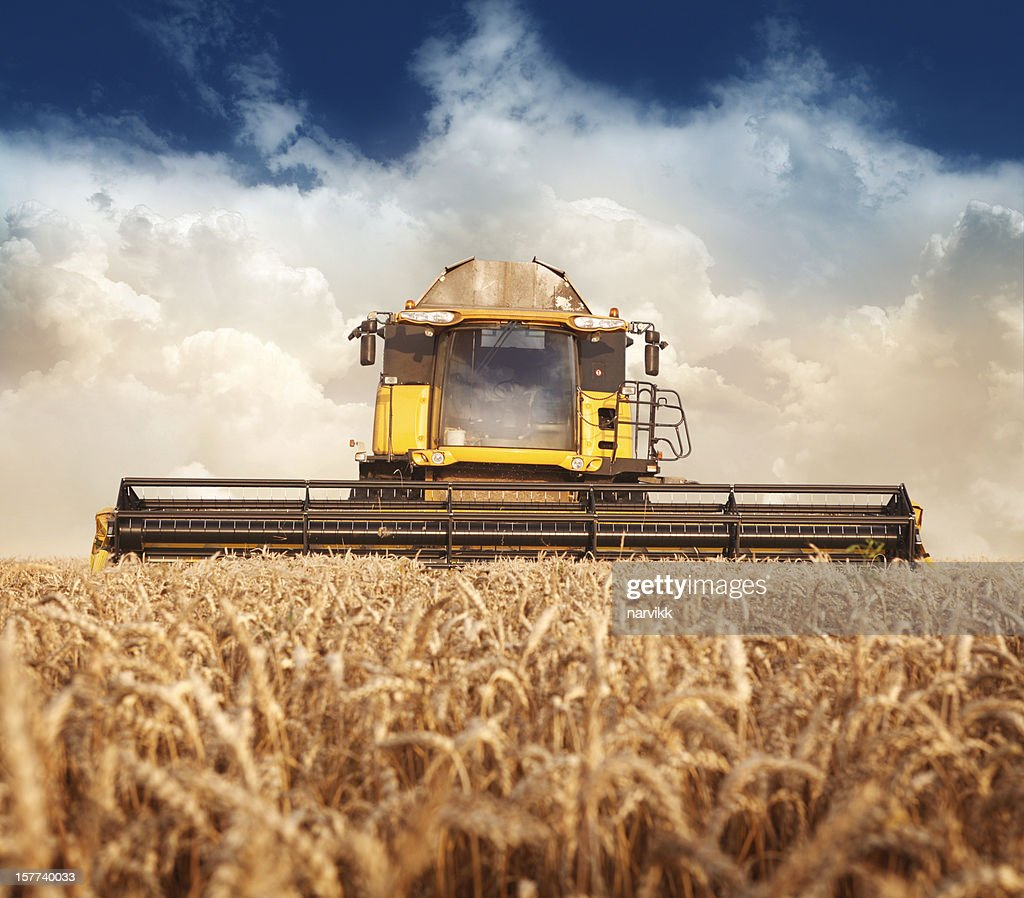 Combine working on the field : Stock Photo
