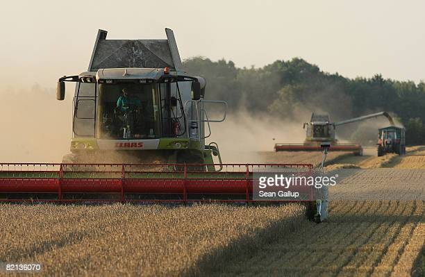 Combines harvest wheat at a field near Juehnsdorf on July 31 2008 near Berlin Germany Though world food prices are rising German farmers are...