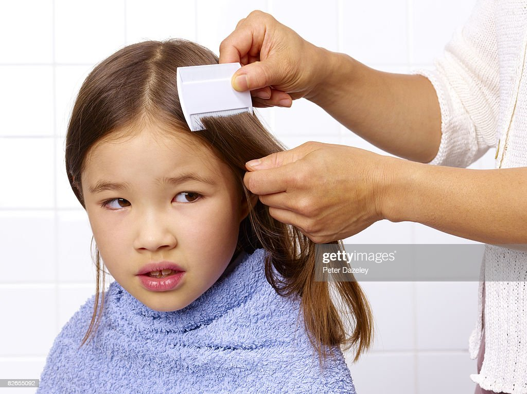 Combing for head louse : Stock Photo
