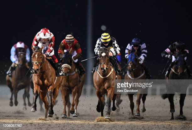 Come on Bear ridden by George Rooke wins the Good Friday Spring Country Fair Handicap Stakes that Chelmsford City Racecourse on February 13 2020 in...