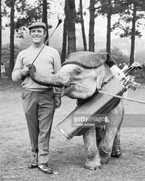 Comedian Dickie Henderson plays a round of golf at Selsdon Park Surrey with Mini the Indian elephant his costar in the upcoming TV series 'A Present...