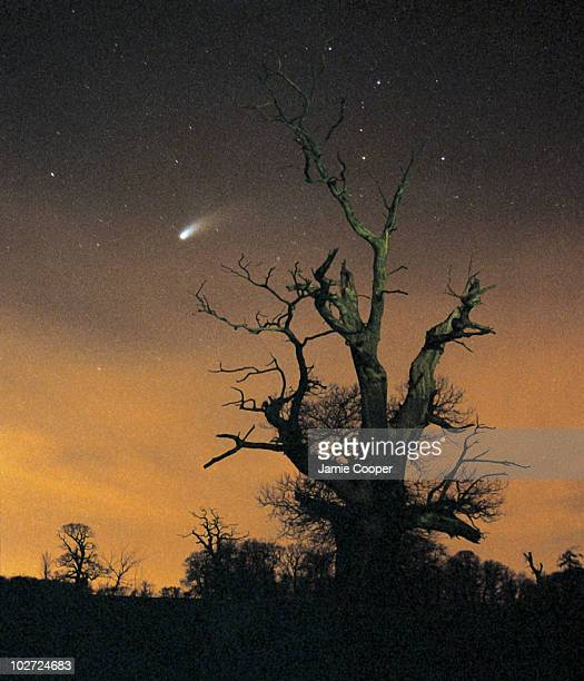 Comet HaleBopp by Jamie Cooper Comet HaleBopp over the Northamptonshire countryside