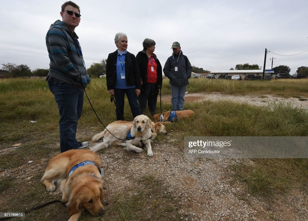 Comfort dogs wait to meet people outside the First Baptist Church, which was the scene of the mass shooting that killed 26 people in Sutherland Springs, Texas on November 8, 2017. A gunman wearing all black armed with an assault rifle opened fire on a small-town Texas church during Sunday morning services, killing 26 people and wounding 20 more in the last mass shooting to shock the United States. /