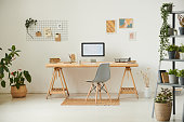 Comfortable workplace with potted plants, wall organizer, pictures and computer