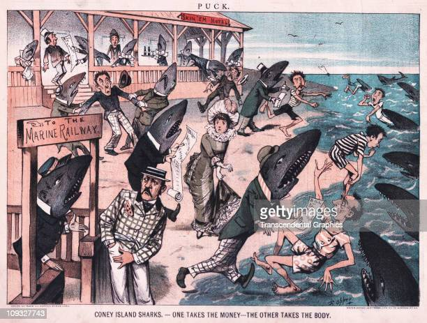 NEW YORK A comical scene of sharks at work at Coney Island all kinds of sharks is illustrated in this cartoon from the political magazine Puck from...