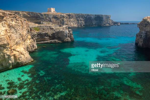 comino island view of a bay with turqouise water , and cliffs - malta - malta stock pictures, royalty-free photos & images