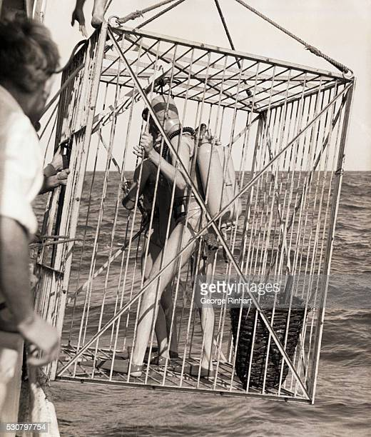 Commander Jacques Y Cousteau famous underwater explorer was commissioned by BP Exploration Company the prospecting subsidiary of the British...