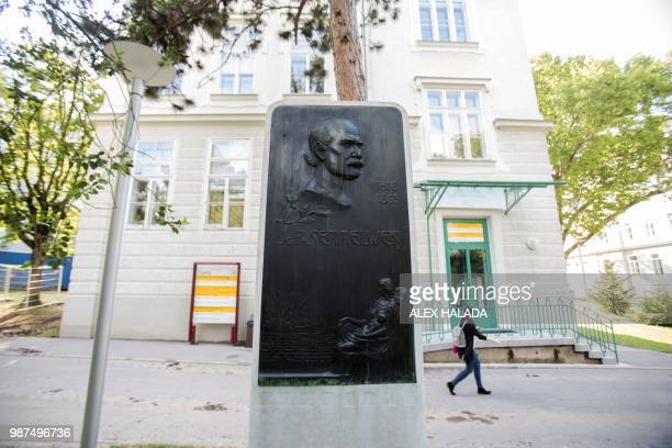 Commemorative plaque for pioneering scientist Ignaz Phillip Semmelweis stands in the garden of the General Hospital in Vienna on June 28, 2018. -...
