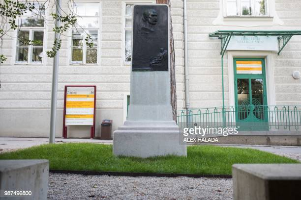 A commemorative plaque for pioneering scientist Ignaz Phillip Semmelweis stands in the garden of the General Hospital in Vienna on June 28 2018...
