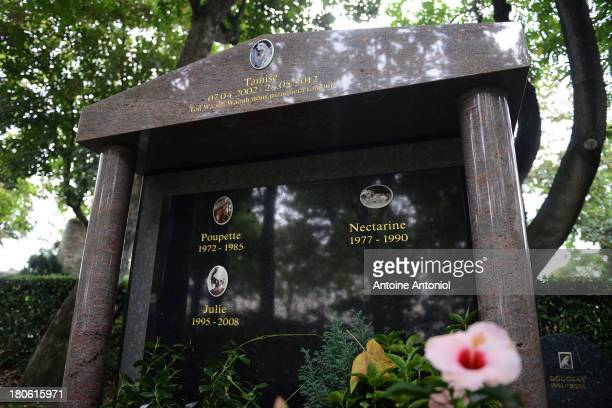 Commemorative Stele for cats and dogs stand in the cemetery on September 10 2013 in AsnieressurSeine FranceThe plaque says that he saved 40 people...