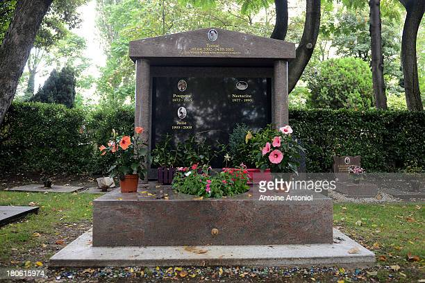 Commemorative Stele for cats and dogs stands in the cemetery on September 10 2013 in AsnieressurSeine FranceThe plaque says that he saved 40 people...